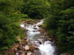 日高幌別川の上流部